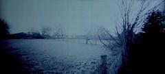 Into the blue (Rosenthal Photography) Tags: diafilm rodinal12520°c18min ff120 color landschaft lochkamera januar natur 20180103 asa100 familie pinhole mittelformat winter garten fujiprovia100f 6x12 treu e6 analog zeroimage612b landscape fields farm trees nature longexposure zero image 612b 40mm f158 fuji provia 100f rodinal epson v800