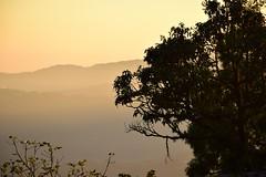 2 Darjeeling sunset (victoriaei) Tags: india darjeeling darjeelingdistrict ghorkaland asia sunset view silhouttes d5300 nikon october 2016 autumn