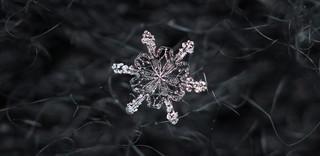 Snowflake n° 5 - Winter 2017-2018 - Switzerland