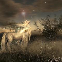 Look up at your stars, they shine for you... (Leni Soul) Tags: teegle sl secondlife marketplace blog shape lenisoul wordpress leni soul horse fantasy unicorn mystical fae forest