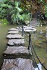 Stepping Stones (oxfordblues84) Tags: chongqingchina chongqing china peoplesrepublicofchina oat overseasadventuretravel touristattraction steppingstones water waterfeature palm plant palmplant leaves leaf railing chainrailing