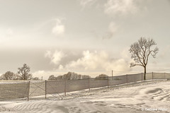 Winterlandscape (GerWi) Tags: schnee snow himmel sky winter landscape winterlandschaft baum schneezaun wolken clouds