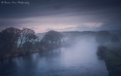 The River Eden at Lazonby (.Brian Kerr Photography.) Tags: cumbria edenvalley lazonby mistymorning landscapephotography trees sony formatthitech firecrest sonyuk a7rii briankerrphotography outdoor outdoorphotography opoty nature naturallandscape natural landscape mist sky serene water