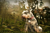 Darcy (PentlandPirate of the North) Tags: darcy miniature schnauzer theroaches staffordshire guard lookout dog
