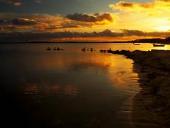 Evening at the beach (Ostseeleuchte) Tags: ostsee balticsea eveninglight abendlicht eveningatthebeach abendsamstrand sierksdorf norddeutschland northerngermany möwen seagulls sky himmel wolken clouds reflections spiegelungen 2017