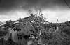 IMG_9577 (alexjones30) Tags: bali indonesia mt batur canon 2017