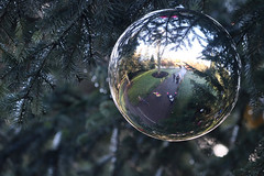 28th December - festive reflecting at Kew (*superhoop*) Tags: kewgardens sacklercrossing megan eli thea me melissa bauble reflection hpad281217 hpad hpad2017