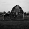Barn, Latah, Washington (austin granger) Tags: barn latah washington palouse flag life liberty god message letters square film gf670 roadside patriotism
