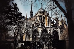 Notre Dame. (Fotofricassee) Tags: seine romancatholicism catholic middleages flyingbuttresses arch architecture church notre dame cathedral paris