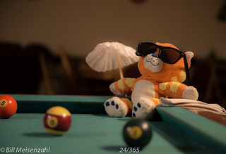 24 Day twenty-Four: Lounging at the Pool (table)