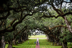 Oak Alley Plantation along the Mississippi River - Vacherie LA (mbell1975) Tags: vacherie louisiana unitedstates us oak alley plantation along mississippi river la tree trees oaktree oaktrees green