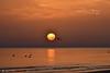 MOMENTI. (Salvatore Lo Faro) Tags: alba mare sole riflessi nuvole natura nature onde risacca uccelli boe vacanza riposo rodi lidodelsole puglia gargano italia italy salvatore lofaro nikon 7200 stunn
