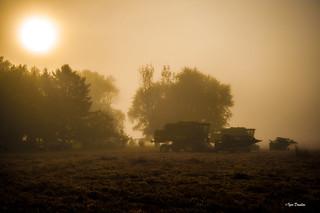 Harvest Sun.