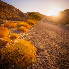 Road Tripping (Thierry Hudsyn) Tags: sony a6000 landscape square sunset sunsetlight sunstar israel