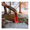 Slide (ngbrx) Tags: gurten berne switzerland schweiz suisse svizzera playground spielplatz rutschbahn rutsche slide bern snow schnee winter