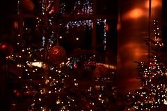 Warm Christmas Lights 🎄✨ (Sara Makboul) Tags: christmas christmastree christmaslights warm warmcolours warmlight cozy winter party holiday decoration red orange nightphotography streetphotography nikond5300 stphotographia