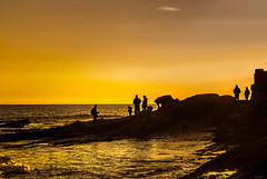 Closeness (Karol ...) Tags: closeness warmth gold goldenhour seascape scenery vista silhouettes sunset sunsetcolours
