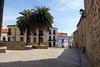 Cáceres (Rafa Gallegos) Tags: cáceres extremadura españa spain antiguo old plaza square largo palmeras palms