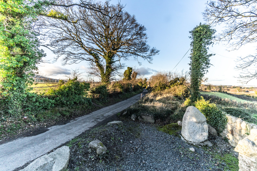 ANCIENT CHURCH AND GRAVEYARD AT TULLY [LAUGHANSTOWN LANE NEAR THE LUAS TRAM STOP]-134608