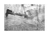 (billbostonmass) Tags: adox silvermax 100 129silvermax1100min68f fm2n 40mm ultron sl2 epson v800 film massachusetts