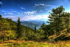 Furlo in HDR (Strocchi) Tags: pesarourbino hdr landscape paesaggio canon eos6d 24105mm cielo sky alberi trees autumn autunno abeti nuvole clouds furlo trekking