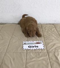 Muddy Girl pic 4 1-6