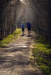 New Year New Beginnings (buddah1888) Tags: joggers newyear resolutions 52week sweat exercise cobwebbs sunlight january startof year