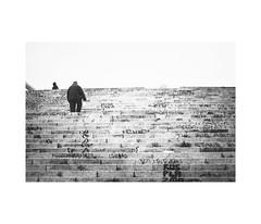 (*naturalphoto*) Tags: instagram naturalphoto streetphoto canon canon6d sevilla