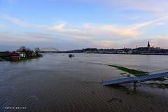 Nijmegen (NED) flooded (Ineke Klaassen) Tags: nijmegen hoogwater 024 flooded water sony sonya6000 sonyimages sonyalpha sonyalpha6000 sonyilce6000 ilce waal rivier river mirrorless outdoor 1025fav 10faves flood 50mm 600views