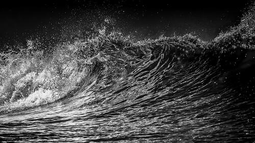 Plastic wave