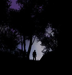 Leaving the Darkness Behind (Stachmo) Tags: leaving darkness behind evil within reshade video game gaming screenshot horror contrast light character forest