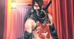 Vengeance is in my heart, death in my hand. Blood and revenge are hammering in my head. (brian.werefox) Tags: findyours gb dura mad signature kurenai samourai vengeance heart blood