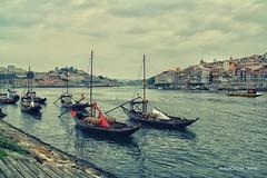 Rio Douro - Porto, Portugal (Placido De Cervo) Tags: porto douro vino wine riodouro portugal boats barche fiume portogallo