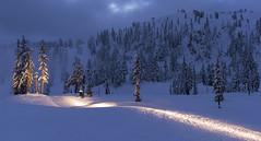 Mt Baker Ski Area, WA. (Sveta Imnadze) Tags: nature landscape wa pacificnorthwest skiresort ski snow mtbakerskiarea