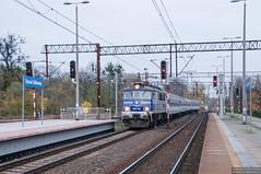 EP07-1031 Toruń Główny (rokiczaaa) Tags: ep07 torun poland rail tlk pkpintercity railway train