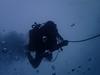 Aroca Marine Cave (YellowSingle 单黄) Tags: aroca tikia marine cave cavern scuba dive diving atlantic ocean socoa olympus tg4