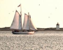 Sailing at Cape Cod (mattbpics) Tags: cape cod capecod sailboat tamron 150600 150600mm canon 70d