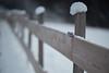 Found (Ernst_P.) Tags: aut inzing österreich tirol wires zaun spielzeug schmetterling schnee winter