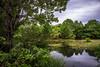 Reflections (slange789) Tags: san antonio botanical garden