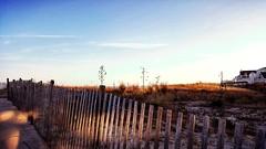 Snow fencing and dunes | Coastal Delaware beaches (delmarvausa) Tags: snowfencing dunes snowfence eastcoast midatlantic delaware beaches ocean seashore fenwickislanddelaware fenwickislandde delmarva delmarvapeninsula bythesea atthebeach beachtown coastal coastalliving coastaldelmarva southerndelawaware fide fenwickisland sussexcounty outdoors scenicdelmarva scenery beach southerndelaware fideusa