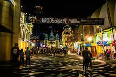 Luna Park (Manny Esguerra) Tags: sydney city cityscape