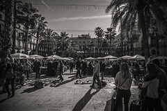 Sunday pastimes..... (Dafydd Penguin) Tags: flea market coin seller antique fair fayre sqaure barri gotic barcelona catalonia catalunya city urban sunday people cadid raw street shot blackandwhite blackwhite black white bw mono monochrome spain nikon df nikkor 16mm af f28d