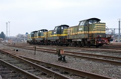 NMBS 8229+8238+8251+8253 (Davy Beumer) Tags: hlr737482 nmbs fvy