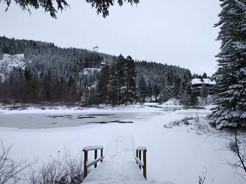 Wintry dock