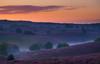 Silent Hills (Civilis Brutus) Tags: sunrise dawn schemer zonsopkomst veluwe nationaalpark veluwezoom zijpenberg posbank heather heide hei flowering mist fog hills heuvels sky lucht clouds wolken landscape landschap panasonic gx80 gx85 lumix vario 35100mm f4056 m43 mft microfourthirds