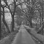 Rural Road thumbnail