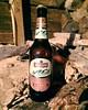 #Natakhtari #Kasris #Beer by @natakhtari_beer #NatakhtariBrewery #Georgian #GeorgianBeer #Georgia #lager #beers #instabeer #beerstagram #beerpics #beerporn #ქართულილუდი #ლუდი #ნატახტარი #ნატახტარილუდი #ნატახტარიკასრისლუდი #საქართველო #пиво #грузинське #гр (_kikoin) Tags: natakhtari kasris beer by natakhtaribeer natakhtaribrewery georgian georgianbeer georgia lager beers instabeer beerstagram beerpics beerporn ქართულილუდი ლუდი ნატახტარი ნატახტარილუდი ნატახტარიკასრისლუდი საქართველო пиво грузинське грузинськепиво натахтарі