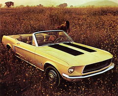 1968 Ford Mustang GT Convertible (biglinc71) Tags: 1968 ford mustang gt convertible