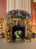 IMG_20180107_110717.jpg (imfaral) Tags: biltmore christmas