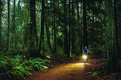 A Light (Viv Lynch) Tags: canada britishcolumbia vancouver vancity westcoast pacificspiritregionalpark forest park trees outdoor hiking bc pacific nature